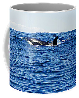 Orca Coffee Mug by Marilyn Wilson