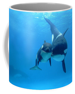 Orca Orcinus Orca Mother And Newborn Coffee Mug