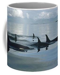 Orca Pod Johnstone Strait Canada Coffee Mug