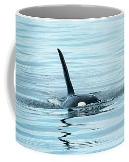 Coffee Mug featuring the photograph Orca Reflections by Mike Dawson