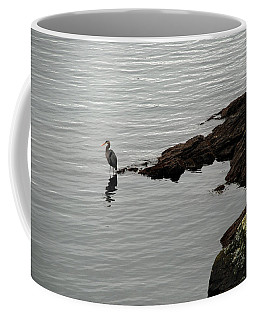 Orcas Island Bird  Coffee Mug