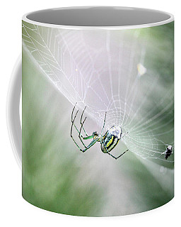 Coffee Mug featuring the photograph Orchard Orbweaver Spider  by Trina Ansel