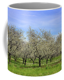 Orchards Of Traverse City Coffee Mug by Rachel Cohen