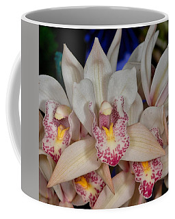 Orchid 348 Coffee Mug