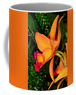 Orchid 355 Coffee Mug