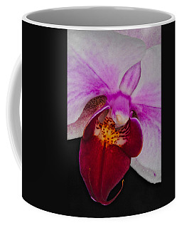 Orchid 376 Coffee Mug