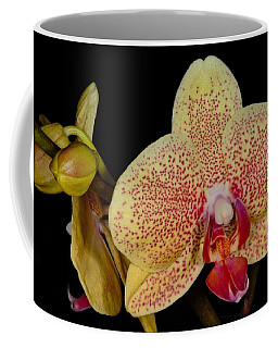Orchid 377 Coffee Mug