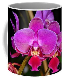 Orchid 422 Coffee Mug