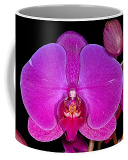 Orchid 424 Coffee Mug