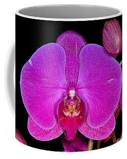 Orchid 424 Coffee Mug