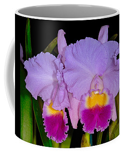 Orchid 428 Coffee Mug