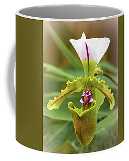 Coffee Mug featuring the photograph Orchid Allure by Richard Goldman