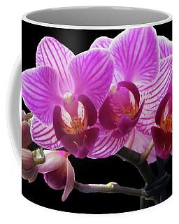 Orchid Beauties Coffee Mug