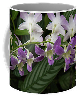 Orchid Beauty Coffee Mug