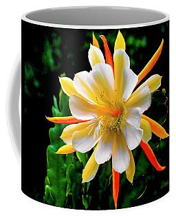 Orchid Cactus Epiphyllum Coffee Mug