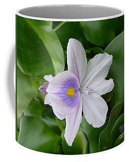 Coffee Mug featuring the pyrography Orchid Flowers by Yury Bashkin