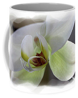 Orchid For Valentines Day Coffee Mug