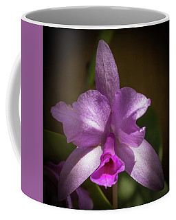 Coffee Mug featuring the photograph Orchid In The Shadows by Richard Goldman
