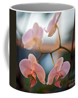 Orchid Menage Coffee Mug
