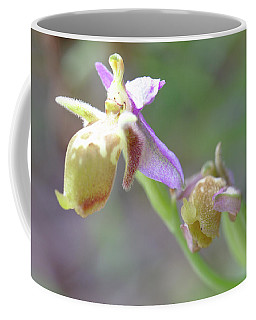 Orchid On Crete Coffee Mug