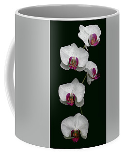 Orchid Sequence  Coffee Mug