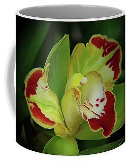 Orchids 10 Coffee Mug by Karen McKenzie McAdoo