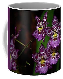 Orchids 12 Coffee Mug by Karen McKenzie McAdoo