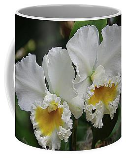 Orchids 13 Coffee Mug by Karen McKenzie McAdoo
