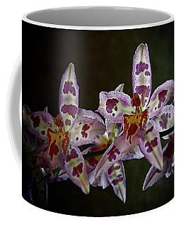 Orchids 16 Coffee Mug by Karen McKenzie McAdoo