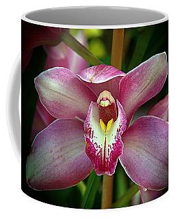 Orchids 18 Coffee Mug by Karen McKenzie McAdoo