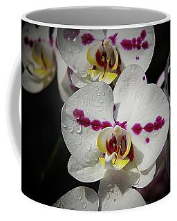 Orchids 19 Coffee Mug by Karen McKenzie McAdoo