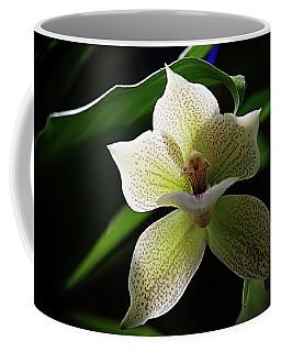 Orchids 2 Coffee Mug by Karen McKenzie McAdoo
