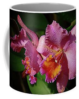 Orchids 3 Coffee Mug by Karen McKenzie McAdoo