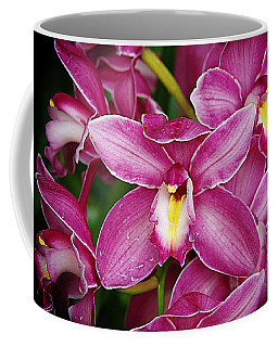Orchids 6 Coffee Mug by Karen McKenzie McAdoo