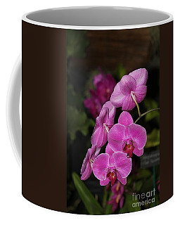 Coffee Mug featuring the photograph Orchids Alicia by The Art of Alice Terrill