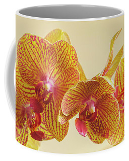 Orchids Coffee Mug