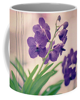 Coffee Mug featuring the photograph Orchids In Purple  by Ana V Ramirez