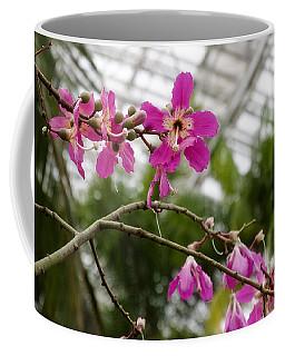 Orchids Myriad Botanical Gardens Okc Coffee Mug