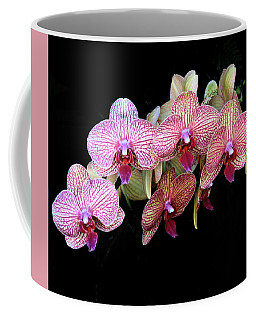 Orchids On Black Coffee Mug by Rosalie Scanlon