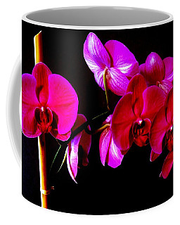 Orchids Coffee Mug by Ron Davidson
