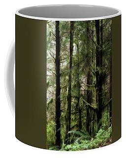 Oregon Old Growth Coastal Forest Coffee Mug