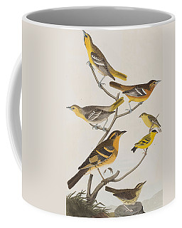 Orioles Thrushes And Goldfinches Coffee Mug