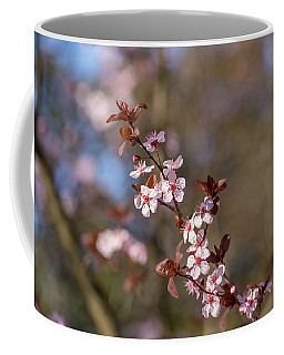 Purple Leaf Sandcherry Blossoms Coffee Mug