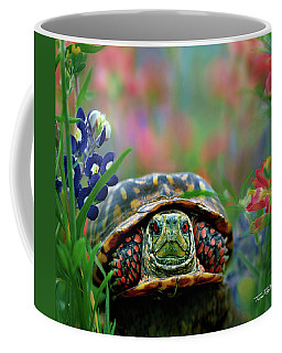 Ornate Box Turtle Coffee Mug