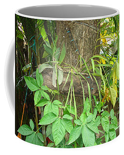 Orquidea Coffee Mug