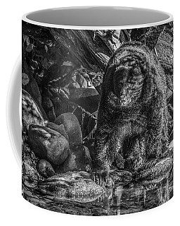 Oservant Black Bear  Coffee Mug