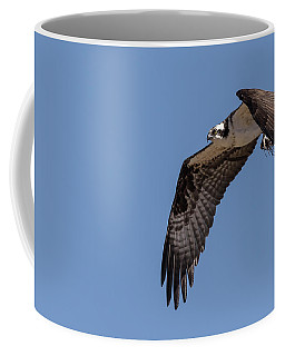 Coffee Mug featuring the photograph Osprey 2017-1 by Thomas Young