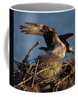 Osprey 2017-2 Coffee Mug