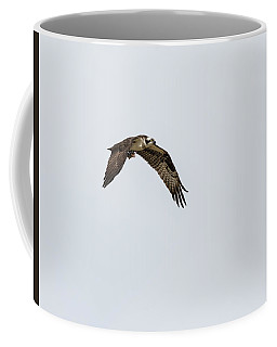 Coffee Mug featuring the photograph Osprey 2017-2 by Thomas Young