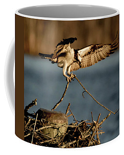 Osprey 2017-3 Coffee Mug